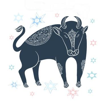 ujemanje bik